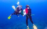Aqua Excursions